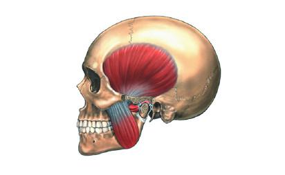 ATM: Alteración de la Articulación Temporo-Mandibular